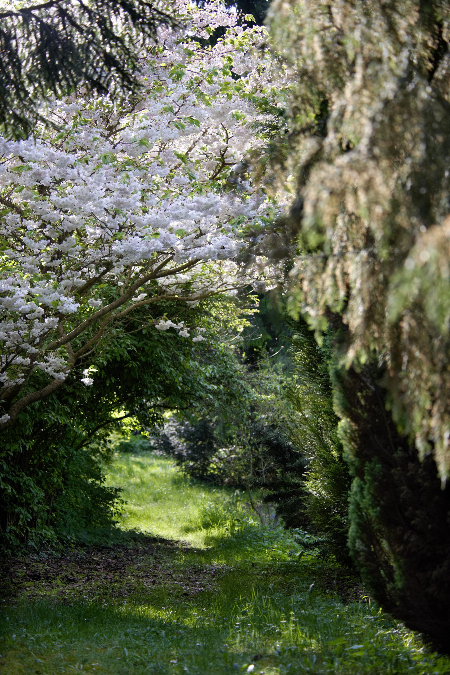 Gartenwelt gundacker for Natur im garten